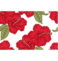 red hibiscus flowers seamless pattern vector image