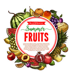 Sketch fruit store poster of farm fruits vector