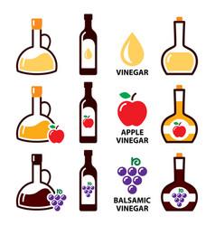 Vinegar icon set - apple cider and baslamic vector