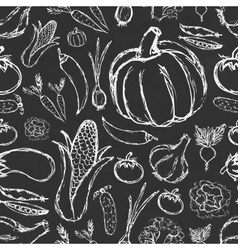 simple hand drawn doodle vegetables on black board vector image