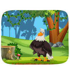 an eagle in nature background vector image