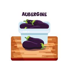 Aubergine flat design vector