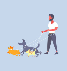 casual man dog walker guy walking with many dogs vector image