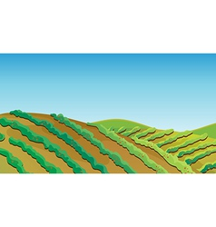 Fertile land vector