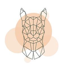 Geometric head of alpaca wild animal vector