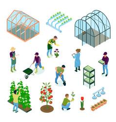 Greenhouse isometric set vector