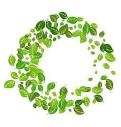 leaves spring vortex vector image