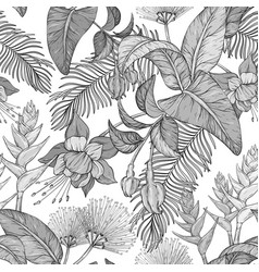 seamless monochrome pattern with tropical flowers vector image