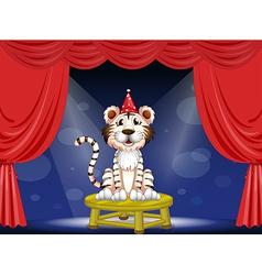 Cartoon Circus Tiger vector image vector image