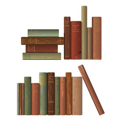 rows of old books vector image