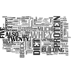 whey protein diet text word cloud concept vector image vector image