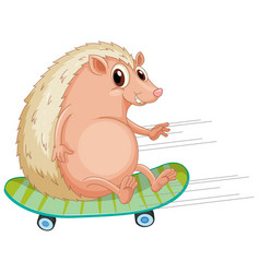 a hedgehog playing skateboard vector image