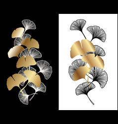 ginkgo biloba leaves decoration set vector image