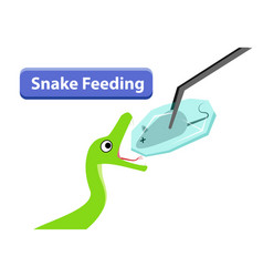 green snake feeding with frozen rat in art vector image