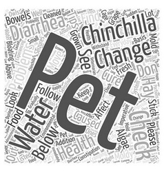 How to cure some health problems your pet vector