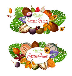 natural exotic fruits vegetarian food icons vector image