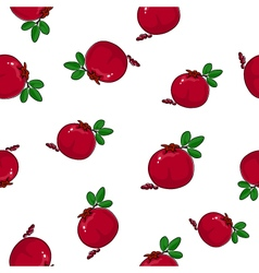 Seamless Pattern of Pomegranate vector image