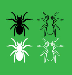 Spider or tarantula icon black and white color set vector