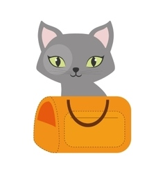 gray small cat green eyes yellow pet carrier vector image
