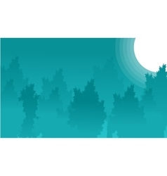 Landscape of forest at night backgrounds vector image