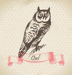 Owl bird hand-drawn vector image