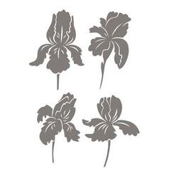 Shown iris flower vector