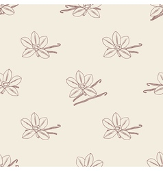 Seamless pattern with sketched vanilla flower and vector image vector image