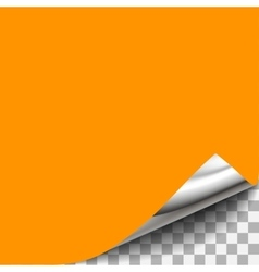 Curled Transparent Paper Corner For shet of paper vector