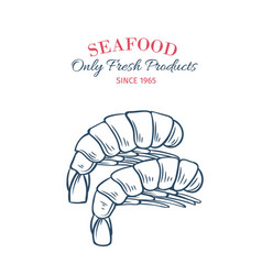 Hand drawn shrimps icon vector