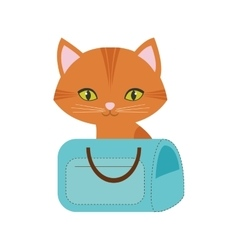 Orange cat green eyes blue pet carrier bag travel vector