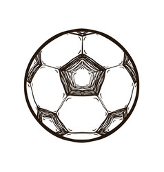 soccer ball isolated coloring book vector image