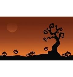 Halloween pumpkins and dry tree vector image