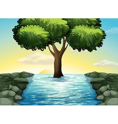 A big tree in the middle of the river vector image