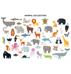 big collection of wild animals vector image