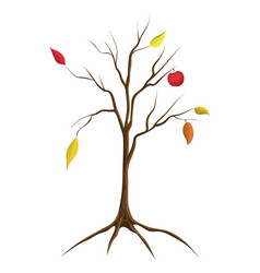 Cartoon bare apple tree isolated vector
