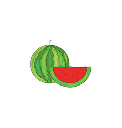 color watermelon icon vector image