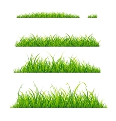 Green Grass Line Set vector