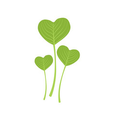 green leaves in the form of heart vector image