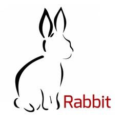 rabbitlogo vector image