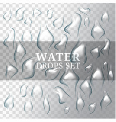 realistic drops of water with liquid on vector image