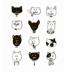 Set of cats heads Face vector image