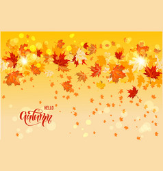 yellow autumn card vector image