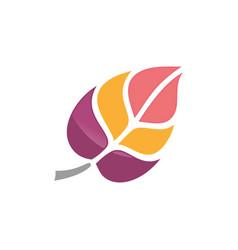 abstract leaf logo design vector image