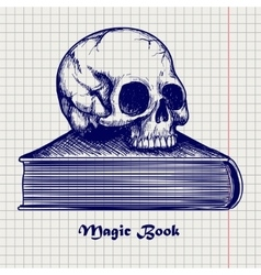 Skull on book ball pen sketch vector image