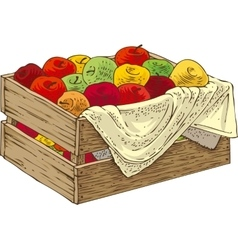 Wooden Box with Ripe Apples vector image vector image