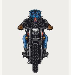 Aggressive black panther head biker vector
