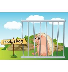 Cartoon zoo hedgehog vector