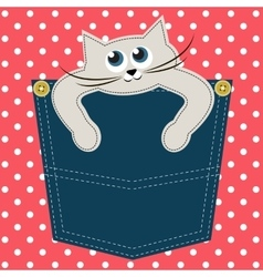 Cat in pocket vector