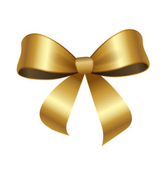 golden bow knot with two edges vector image