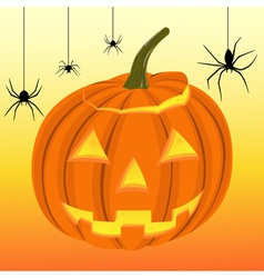 Halloween pumpkin and black spiders on the web vector